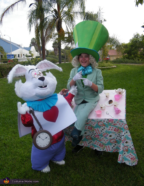 Mad Hatter & White Rabbit Costume