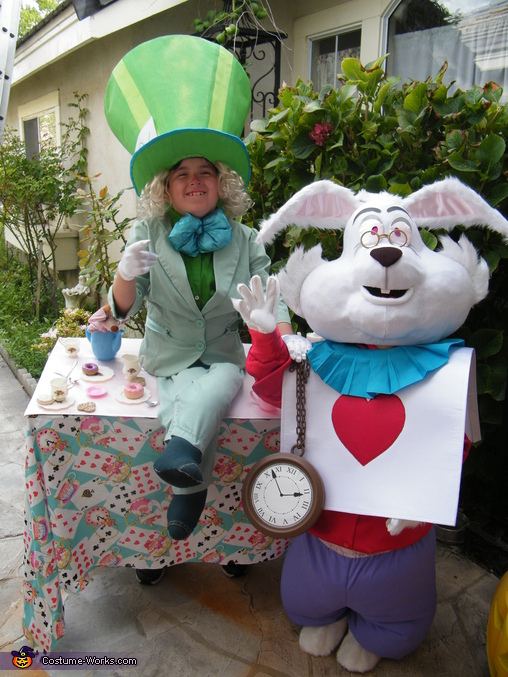 THAT'S VERY IMPORTANT !, Mad Hatter & White Rabbit Costume