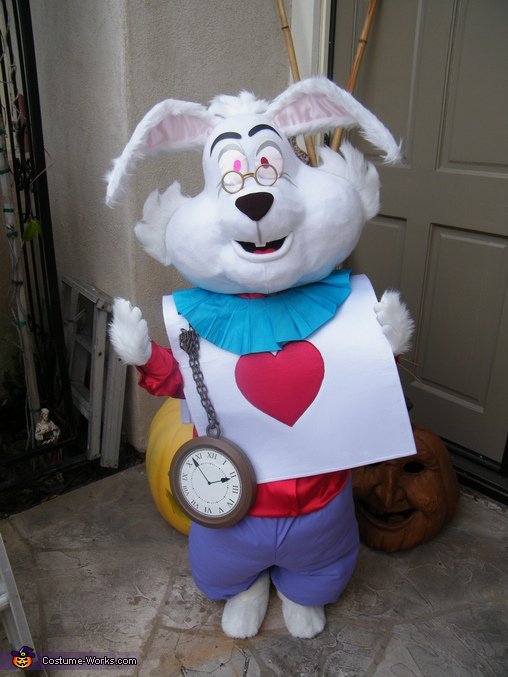 I'M LATE, I'M LATE FOR A VERY IMPORTANT DATE  !, Mad Hatter & White Rabbit Costume