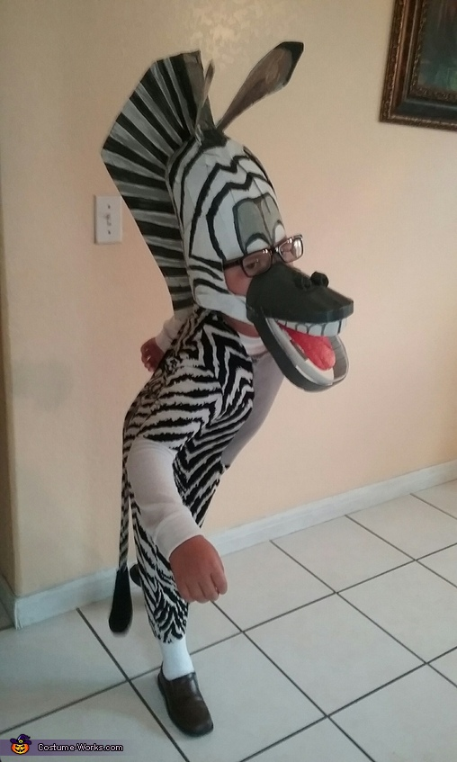 Marty the Zebra, Madagascar Family Costume
