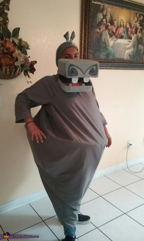 Gloria the Hippo, Madagascar Family Costume