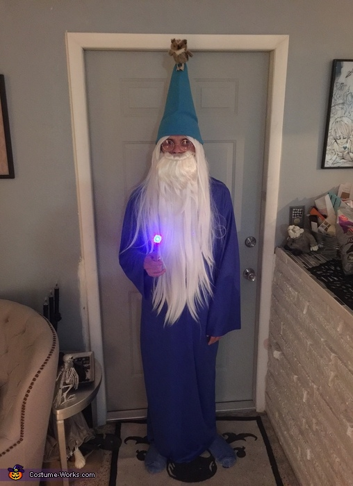 Merlin with Archimedes and wand, Madame Mim and Merlin Costume