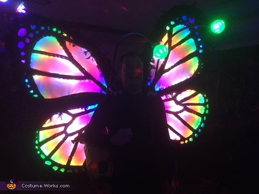 Magic Butterfly Homemade Costume