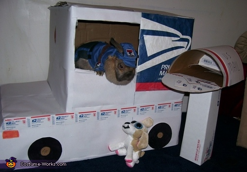 Mail Man Bunny Homemade Costume