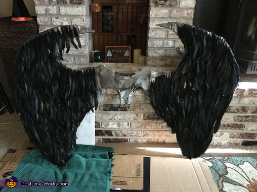 Feathers before Harness, Maleficent Costume