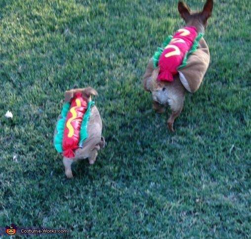 Mama Hotdog & Baby Hotdogs Costume