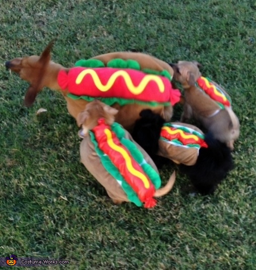 All those hotdogs!, Mama Hotdog & Baby Hotdogs Costume