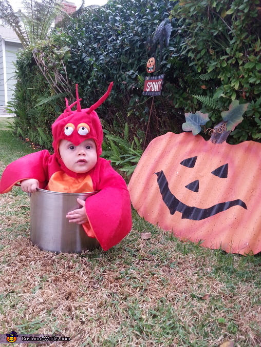 Mama's little lobster stew , Mama's Lobster Stew Costume