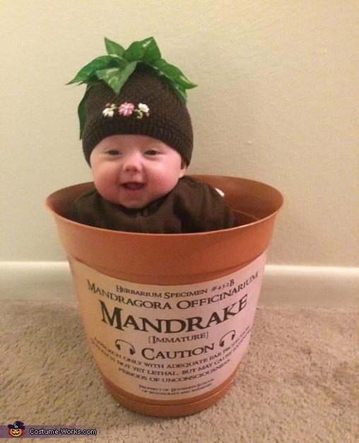 Mandrake Madness Homemade Costume