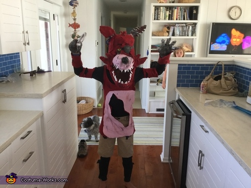 Foxy close up, Mangle and Foxy FNAF Costume