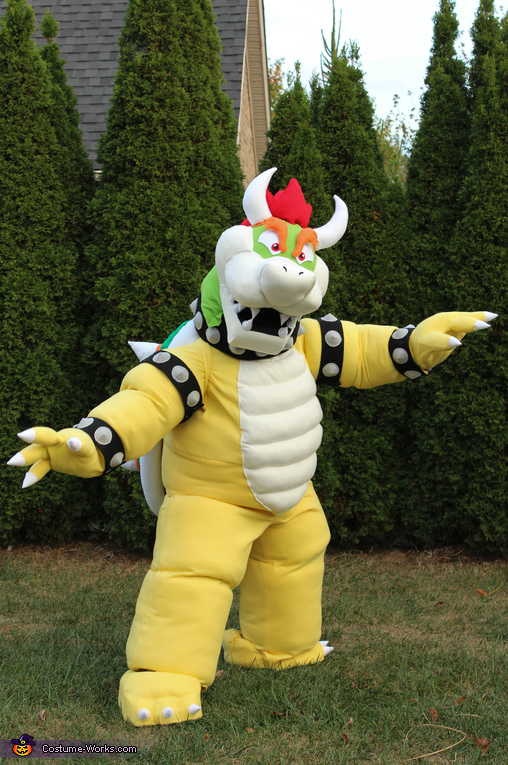 Bowser, Mario Family Costume