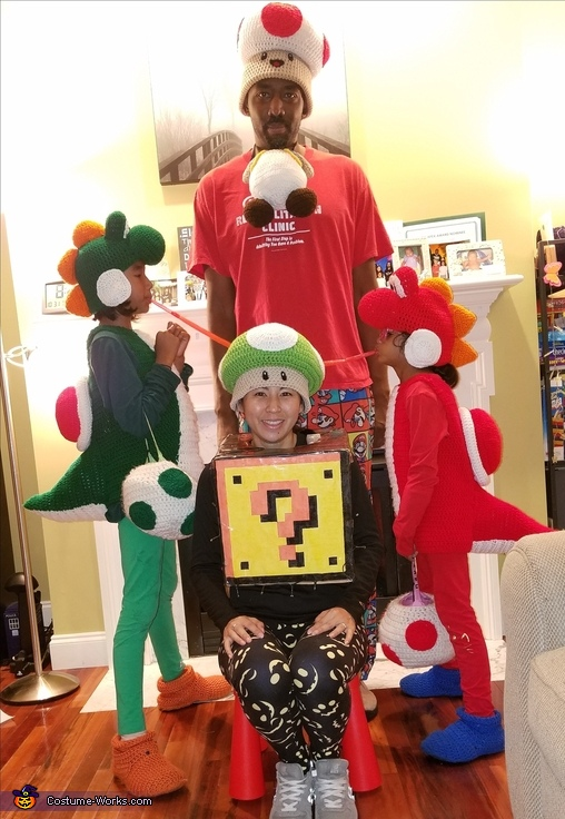 Homemade Mario Family Costume Mind Blowing Diy Costumes