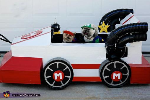 Mario Kart Dogs Costume