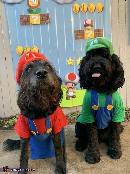 Mario & Luigi Costume
