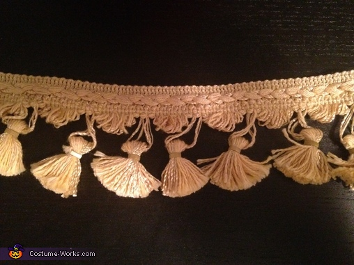 Trim I cut up and used for the emblems on the front, Matador, Bull, & Flamenco Dancer Costume