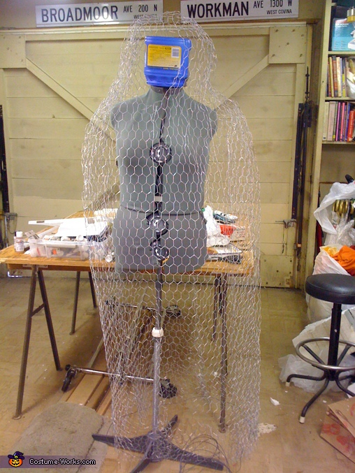 Chicken wire form over dress form.  - Homemade costumes for women
