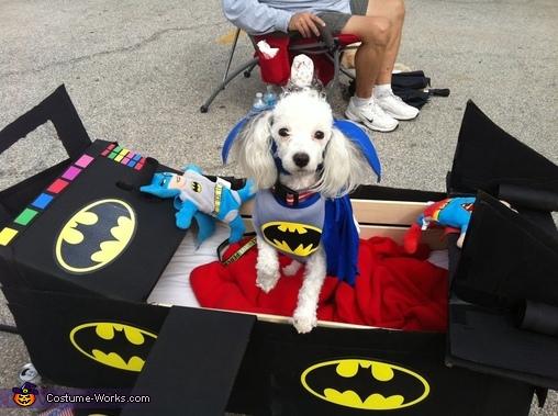 Max as Batman and his Batmobile Costume