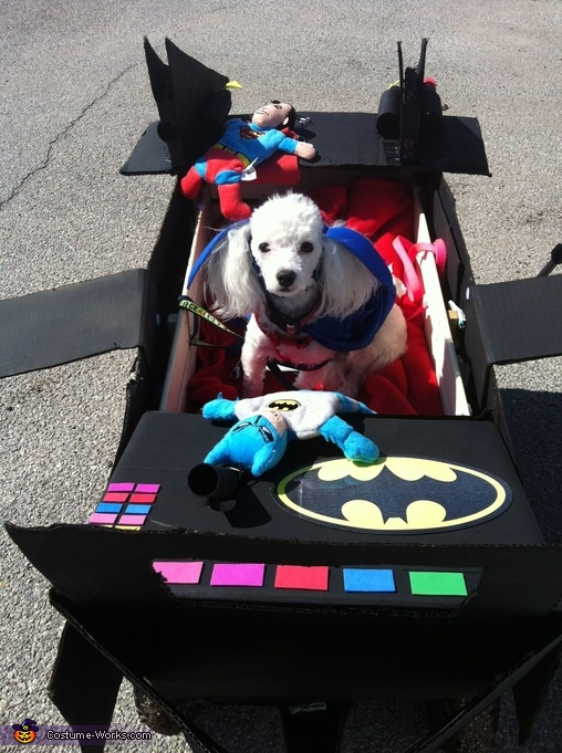Another view of Max and his Batmobile, Max as Batman and his Batmobile Costume