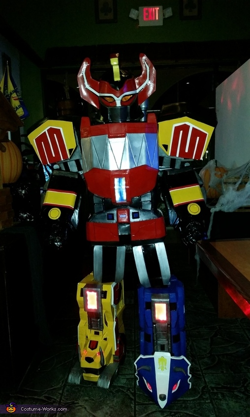 Megazord and Pink Ranger Costume