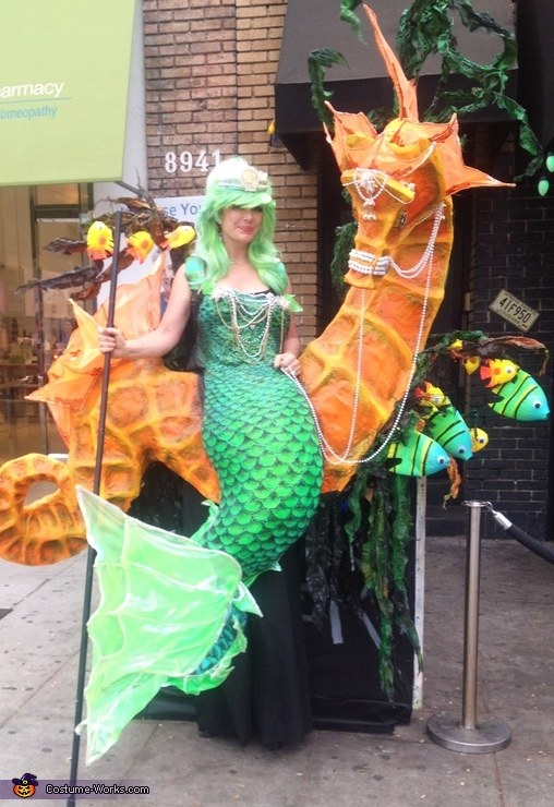 Mermaid and Seahorse Illusion Costume