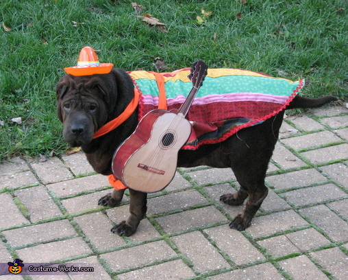 Mexican Musician Costume