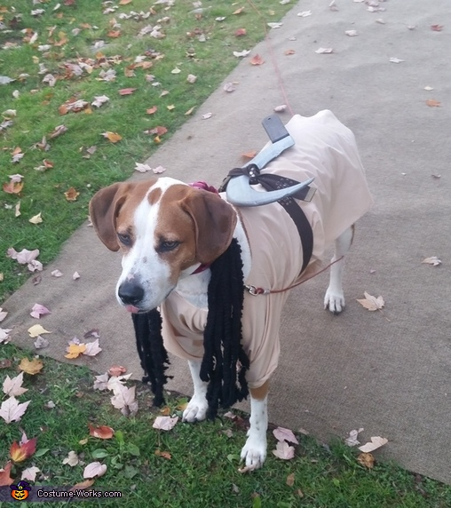 Michonne Dog Costume