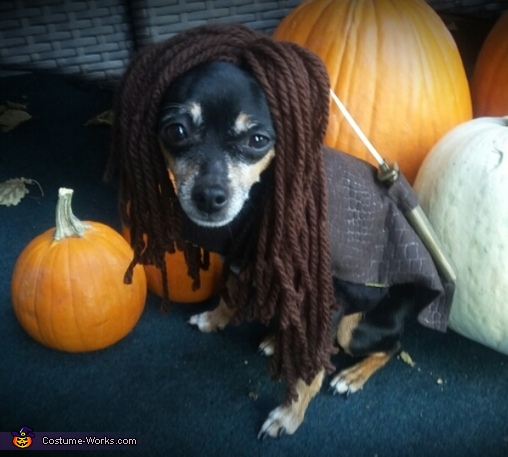 Michonne Mini Costume