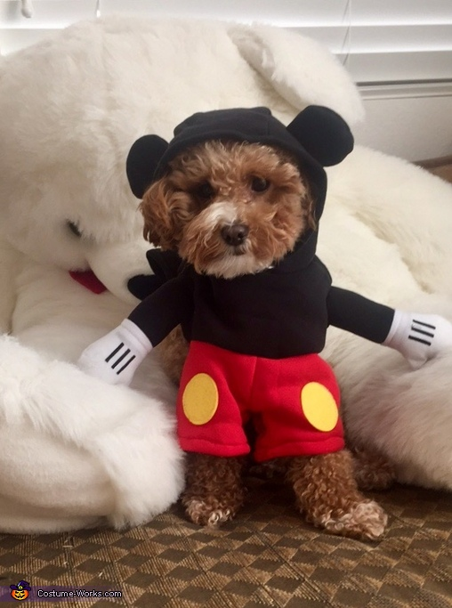 Mickey Dog Costume