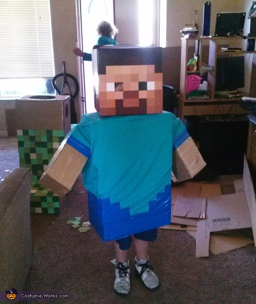 Steve, Minecraft Family Costume