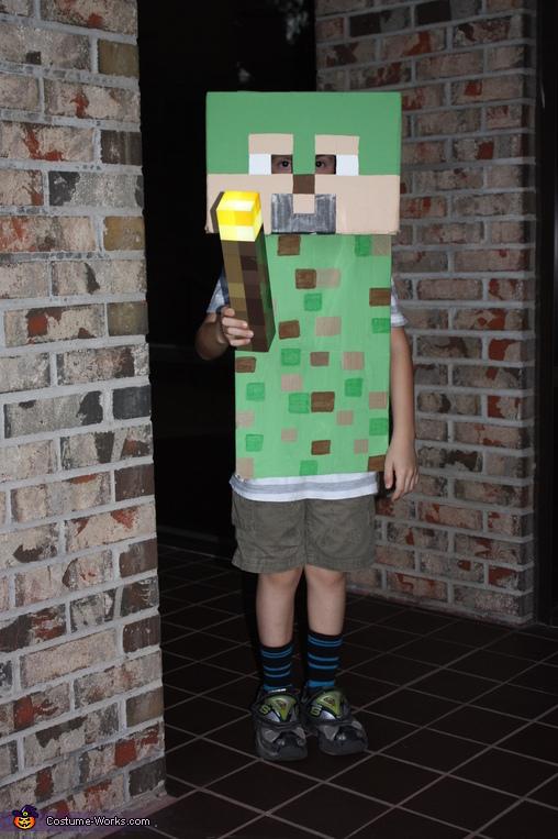 Minecraft Steve, Minecraft Costume