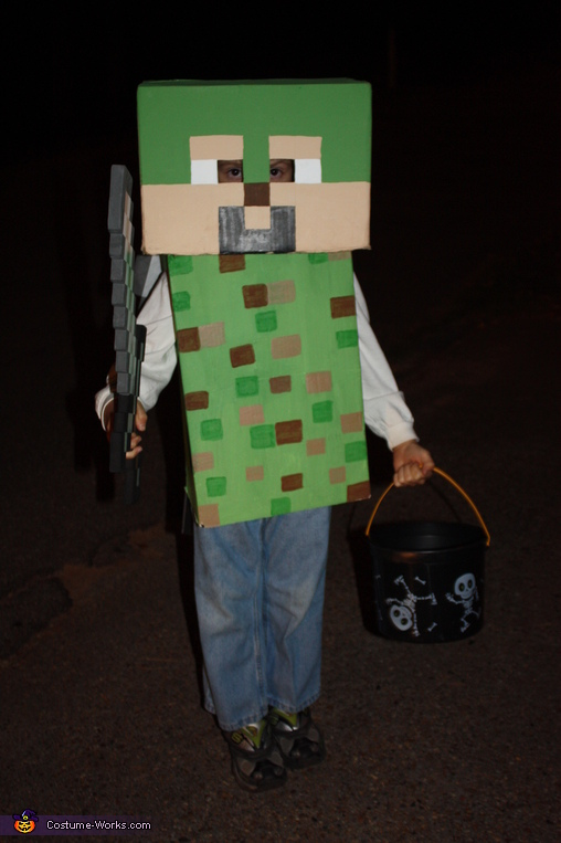 another Minecraft night, Minecraft Costume
