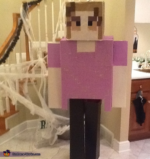 Minecraft Character - Homemade costumes for adults