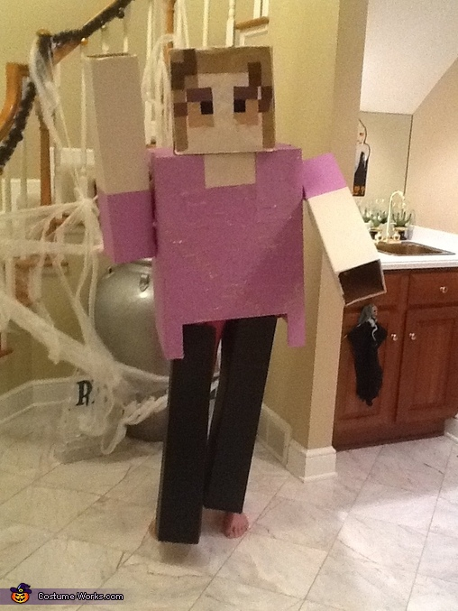 Pose 1, Minecraft Costume