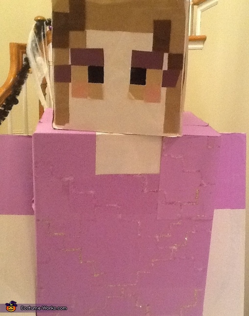 Pose 2, Minecraft Costume