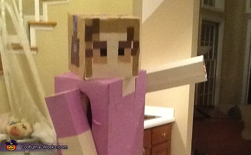 Pose 4, Minecraft Costume