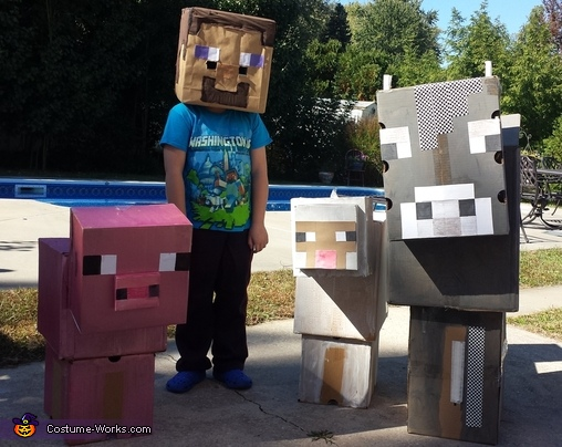 Minecraft Characters Costume