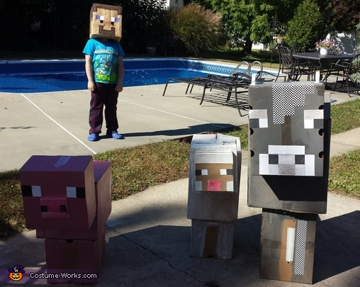 Minecraft Characters Homemade Costume