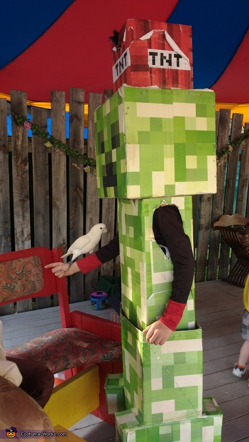side view of the creeper, Minecraft Creeper Costume