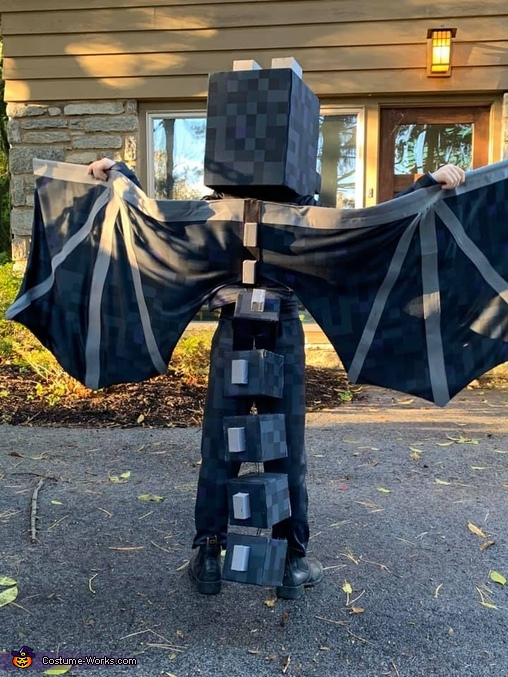 Back - wings outstretched, Minecraft Ender Dragon Costume
