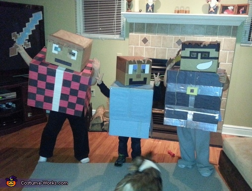 Minecraft Game Characters Costume