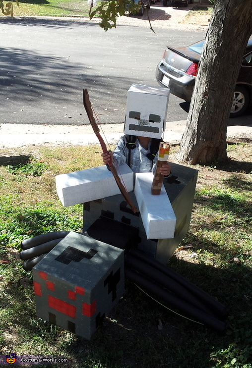 Minecraft Spider Jockey Costume