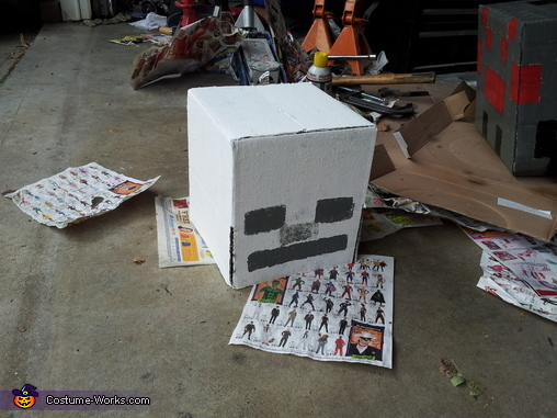 Painting, Minecraft Spider Jockey Costume
