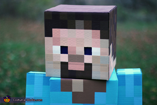 Minecraft Steve Homemade Costume
