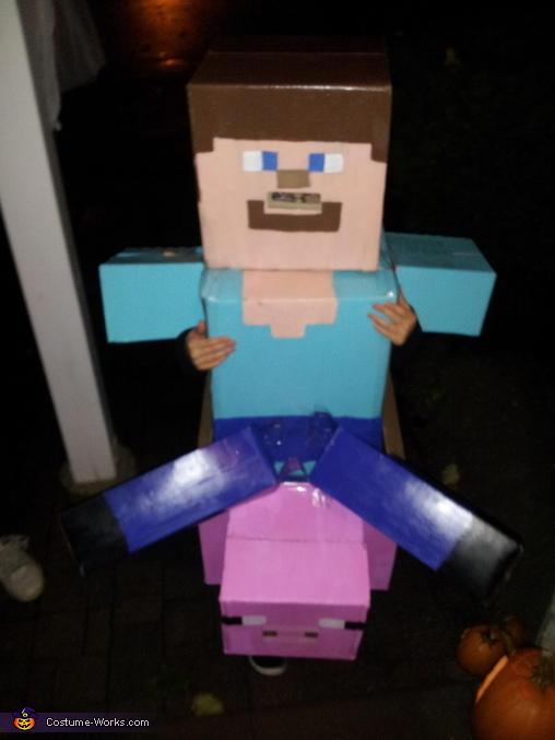 Steve Needs Candy Too! Minecraft Steve Costume & Minecraft Steve Costume DIY - Photo 2/5