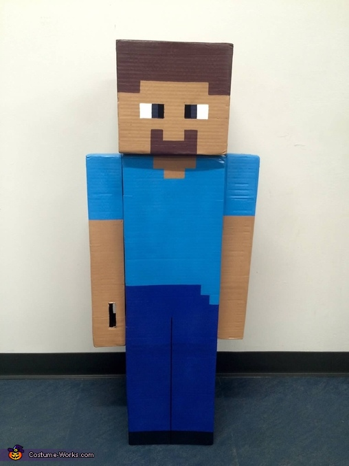 Minecraft Steve front view..., Minecraft Steve Costume
