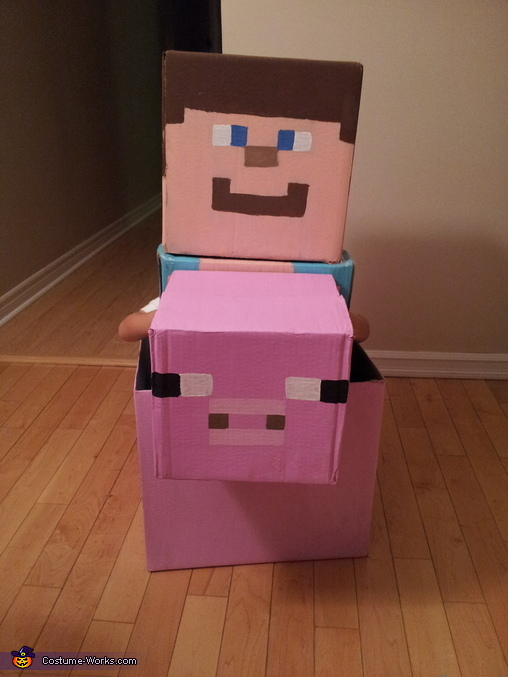 Steve's Almost Finished!, Minecraft Steve Costume