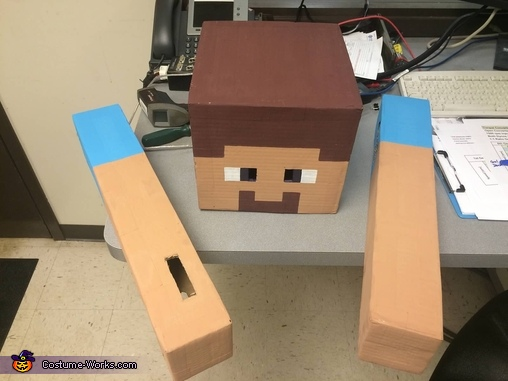 Head and arms painted..., Minecraft Steve Costume