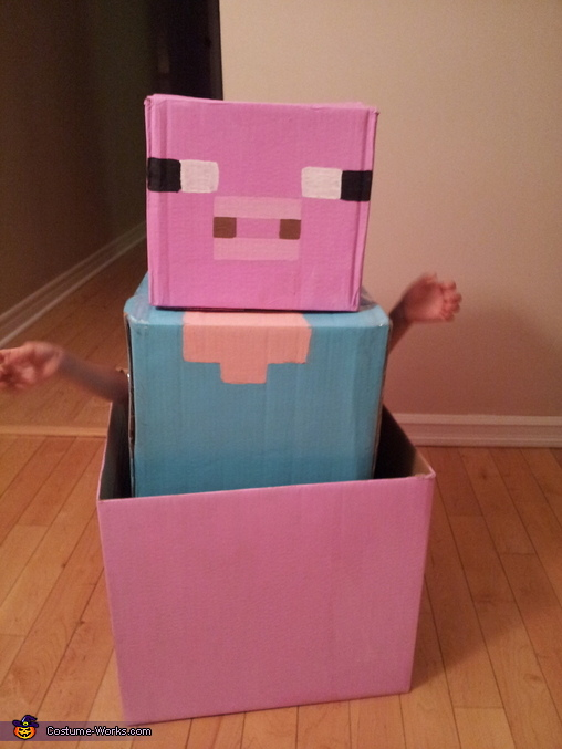 Steve? Is That You??, Minecraft Steve Costume