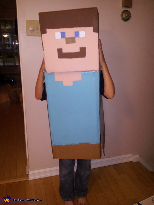 Steve Needs His Pig!!, Minecraft Steve Costume