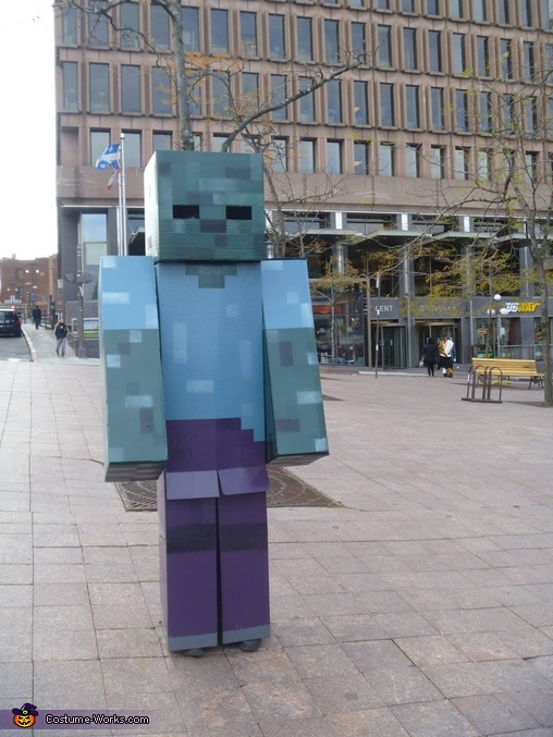 Minecraft Zombie Homemade Costume
